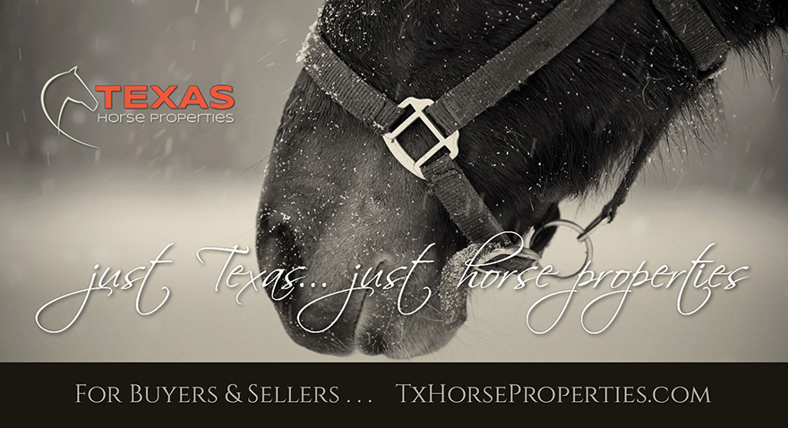Just Texas... just horse properties