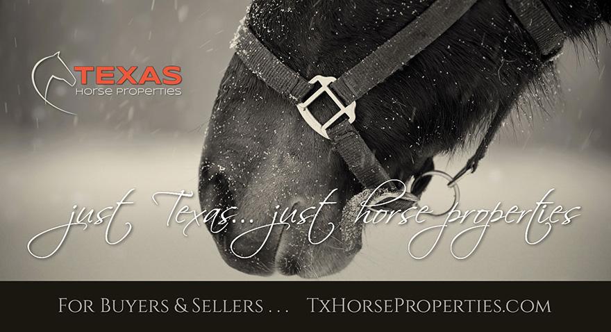 Just Texas... just horse properties